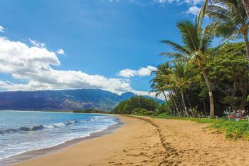 beach-1630540_1920